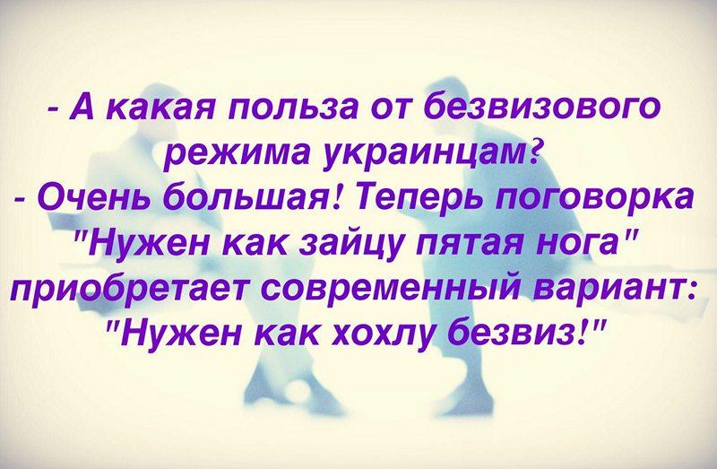 j49901_1492193807.jpg