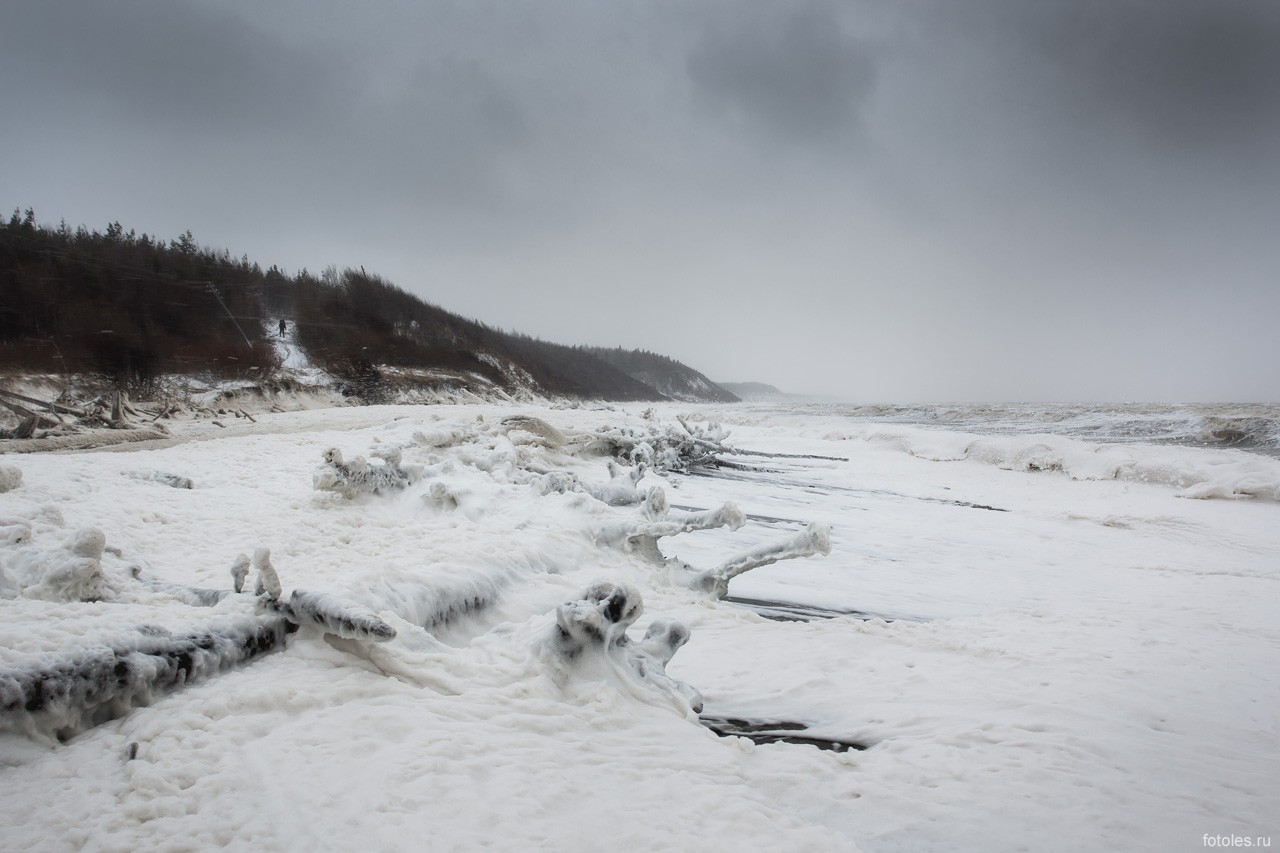 Берега Белого моря_ч.1