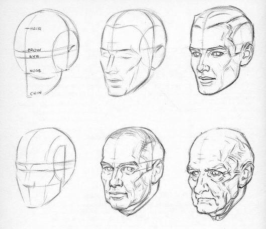 Рисуем лица типы лиц