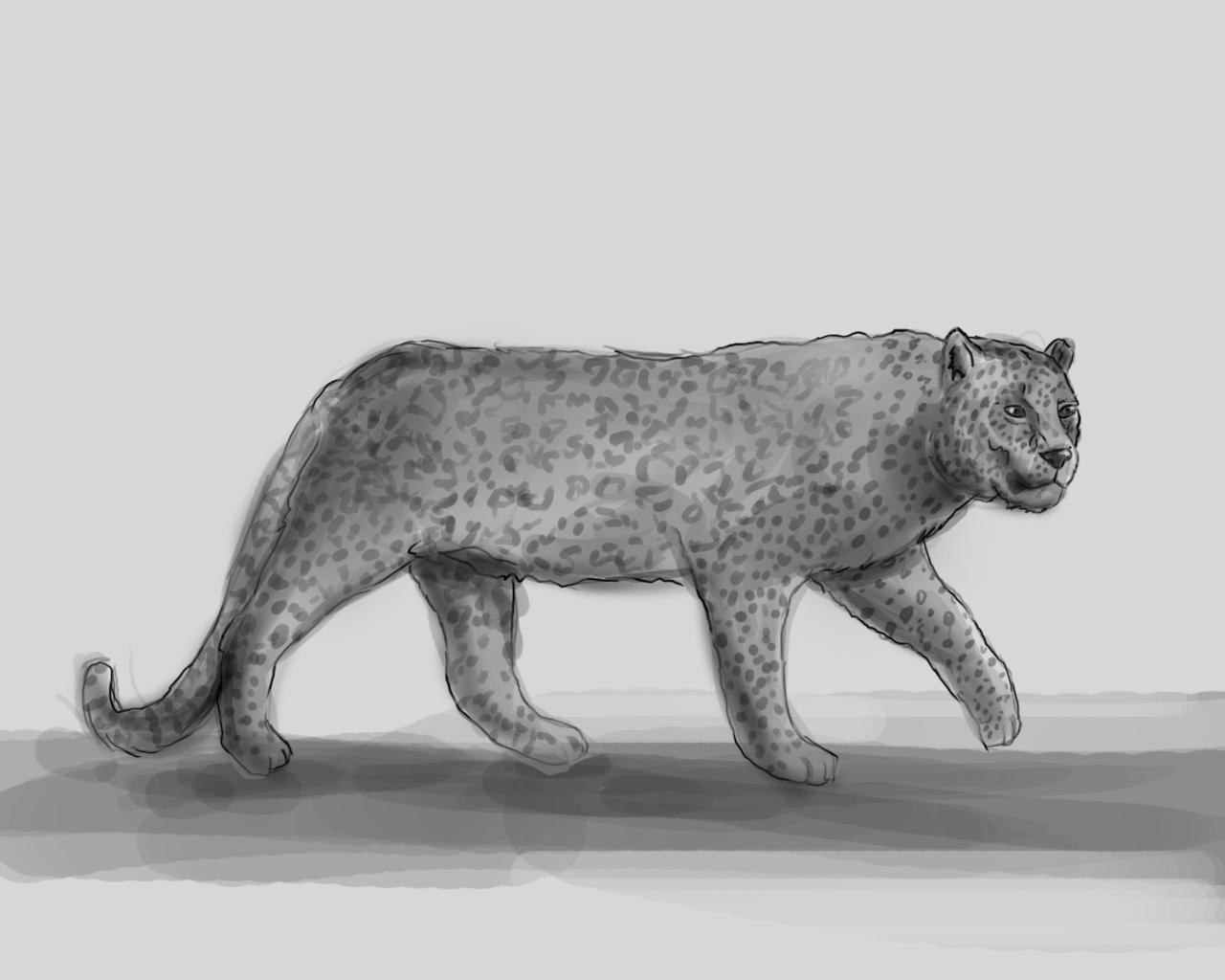 Картинки тигров мультяшных