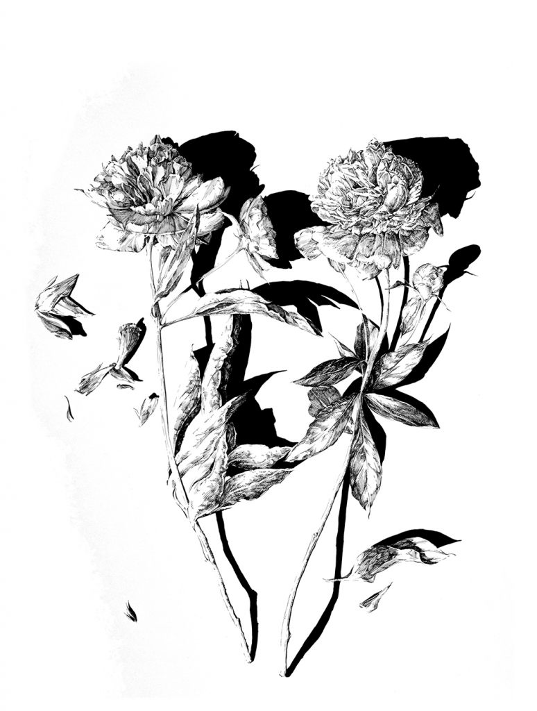 Lewis Dixon Art