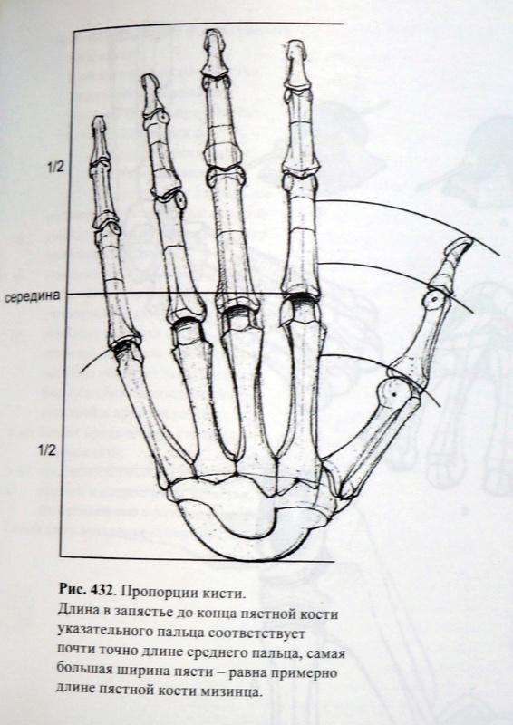 Обучающий марафон по рисованию конечностей