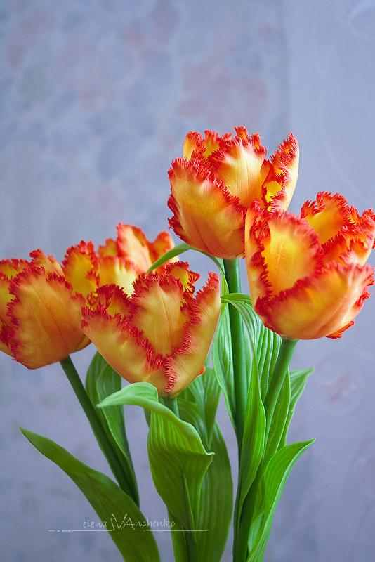 Колокольчик цветок рисунок
