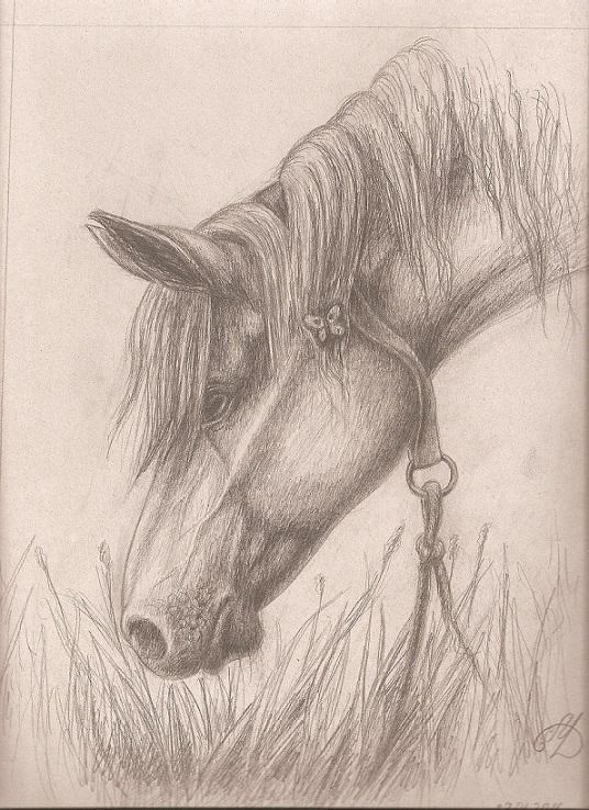 Рисунки рисовать пошаговое